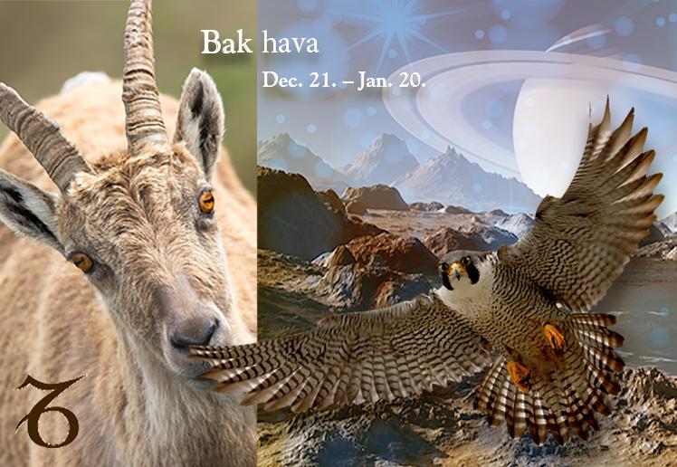 Csillagmesék® – BAK hava (dec. 21.– jan. 20.)